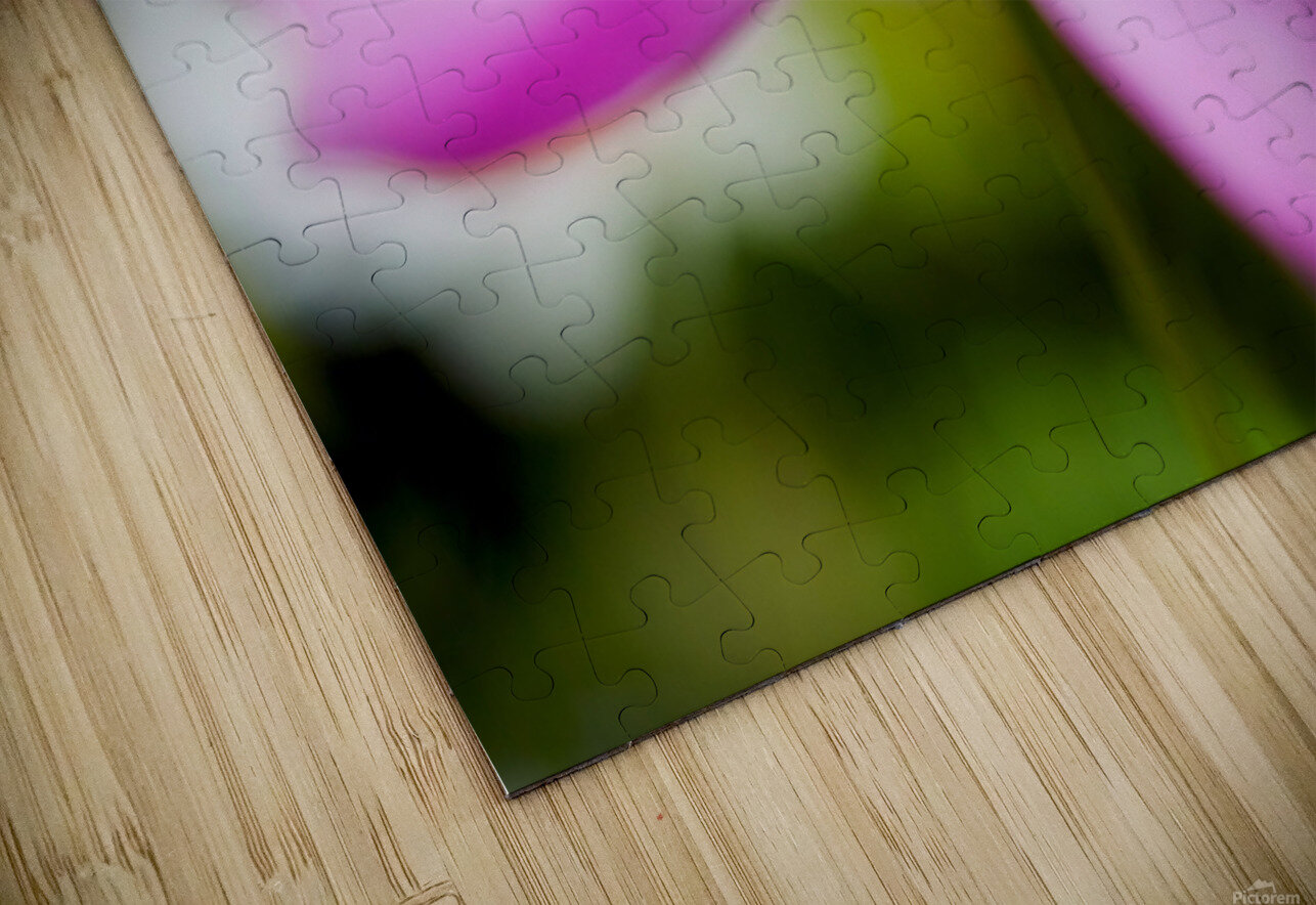 Pink and Flowing HD Sublimation Metal print