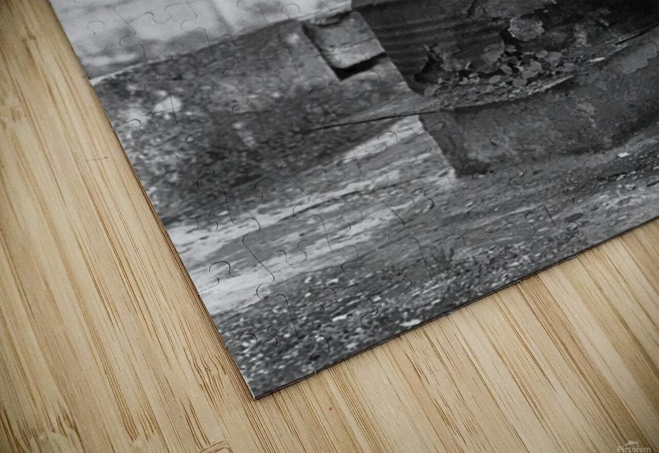 Fu Bidone HD Sublimation Metal print