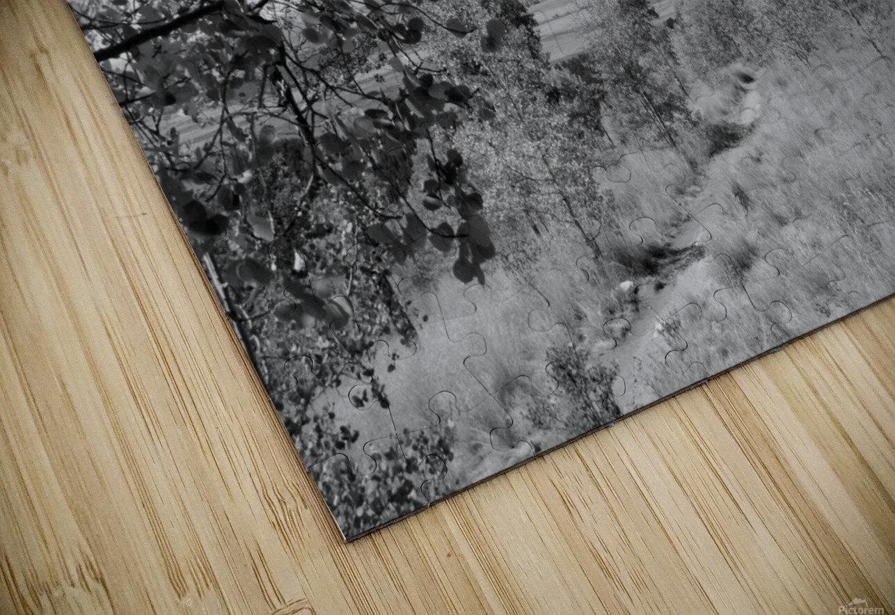 DSC01173 HD Sublimation Metal print