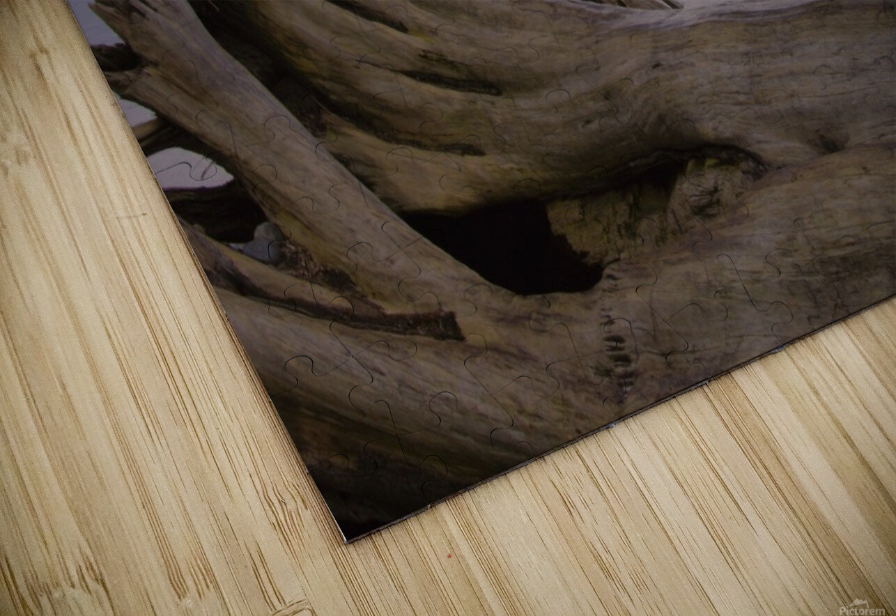 Driftwood HD Sublimation Metal print