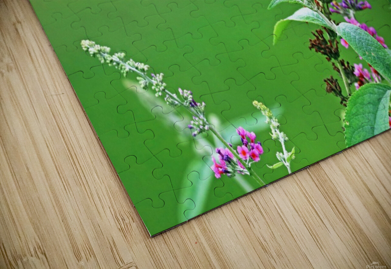 Jewel In The Garden HD Sublimation Metal print