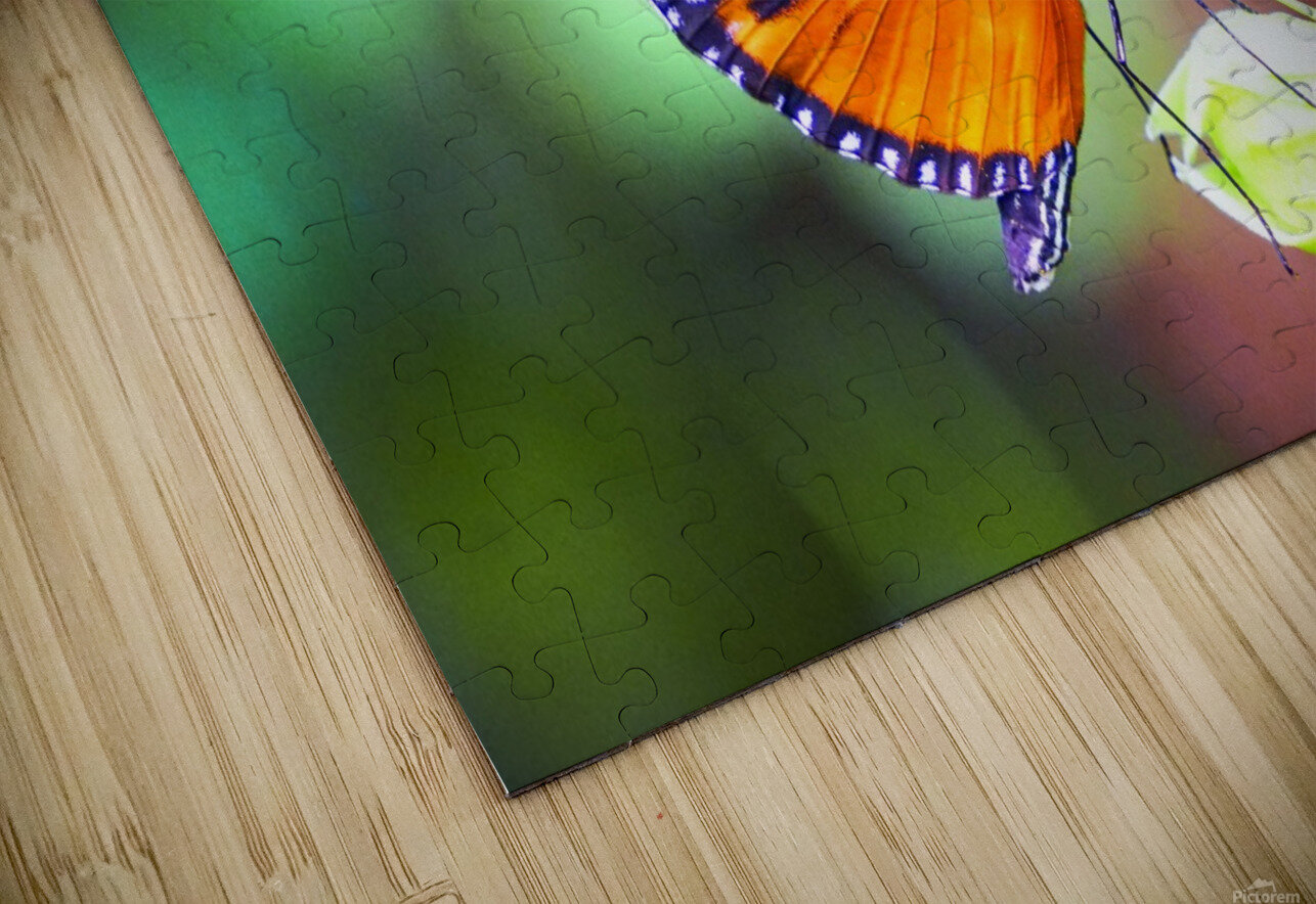 Monarch on a Bud HD Sublimation Metal print