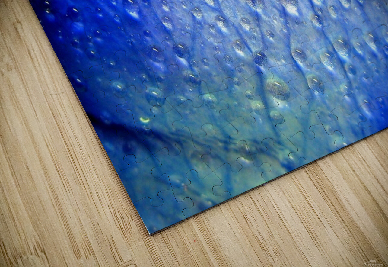 Blue Lips HD Sublimation Metal print