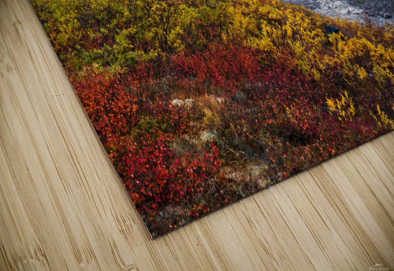 Mountain Paradise HD Sublimation Metal print