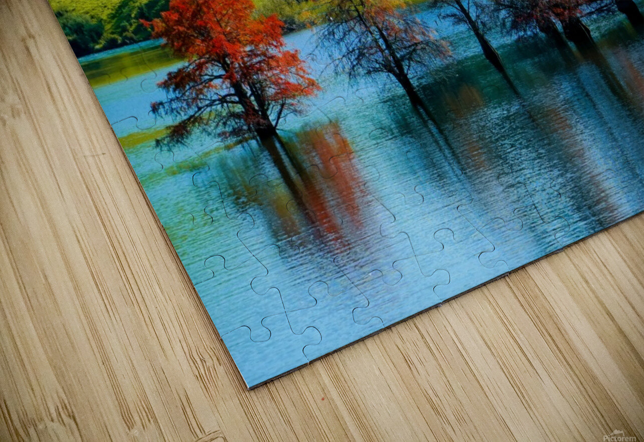Water Trees HD Sublimation Metal print