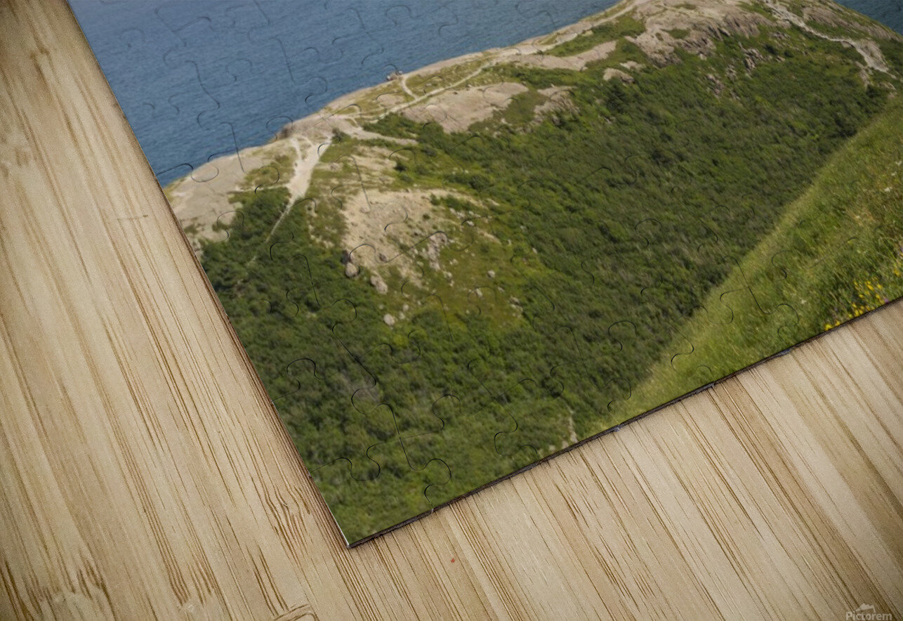 Vista from Signal Hill HD Sublimation Metal print