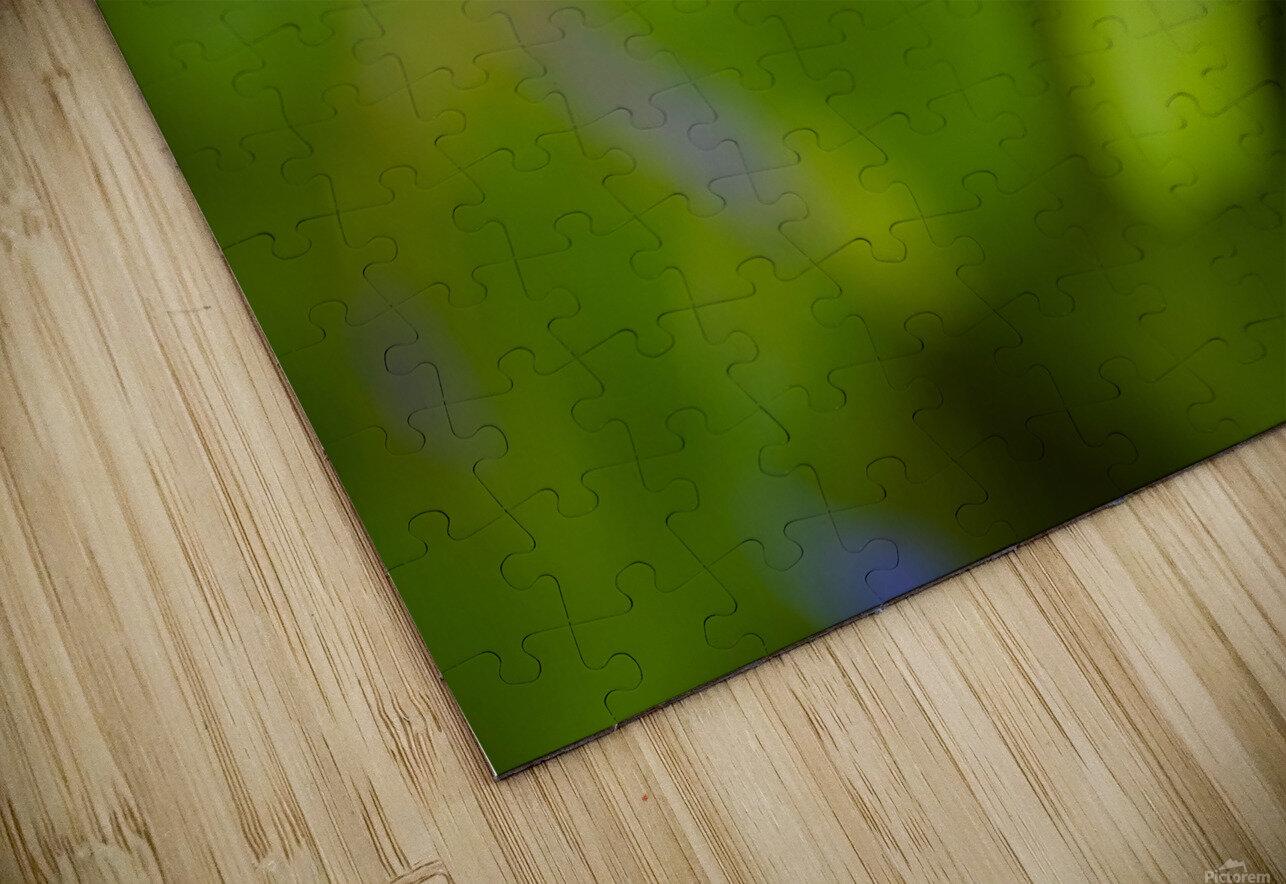 Flora HD Sublimation Metal print