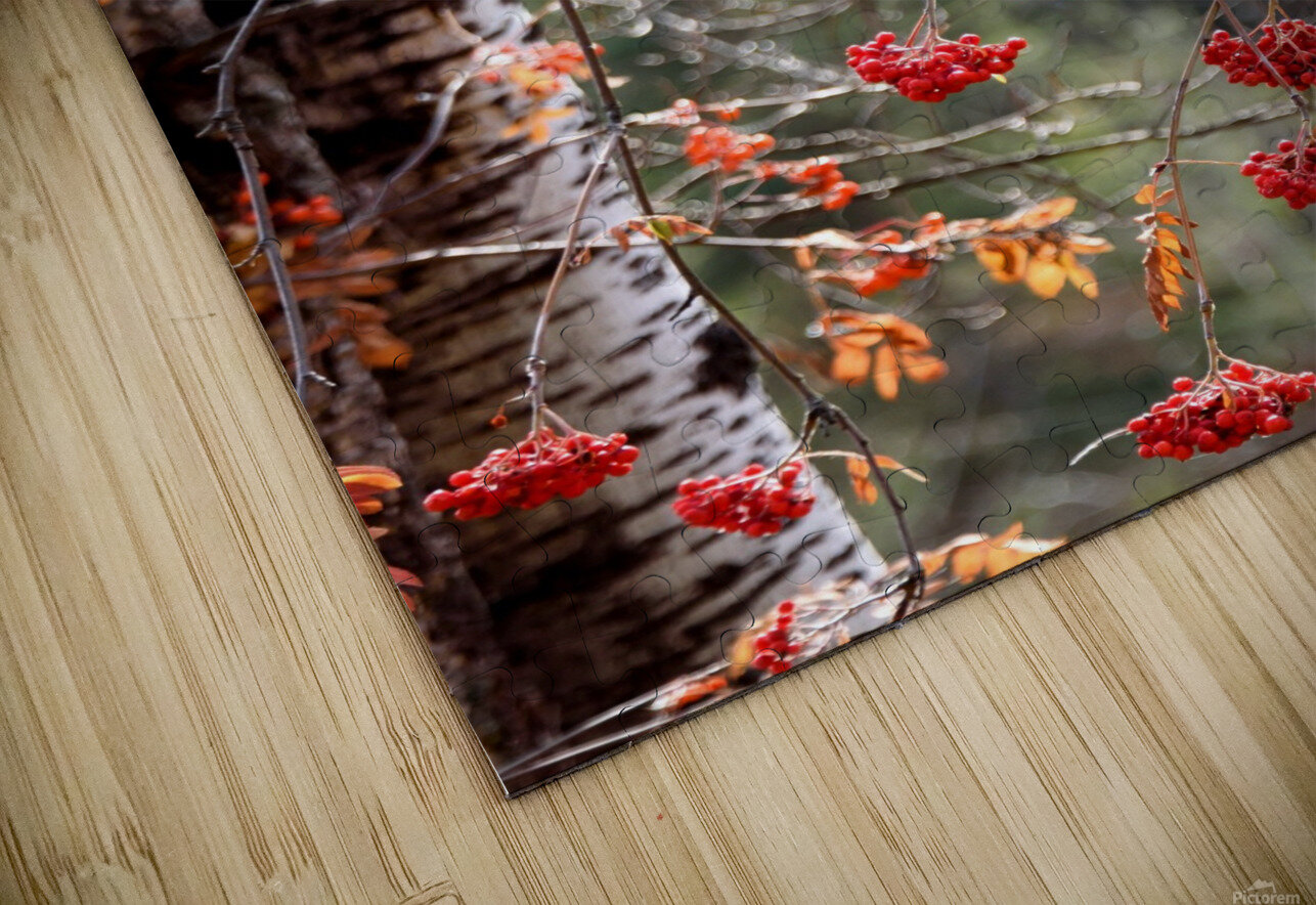 Residual reds HD Sublimation Metal print