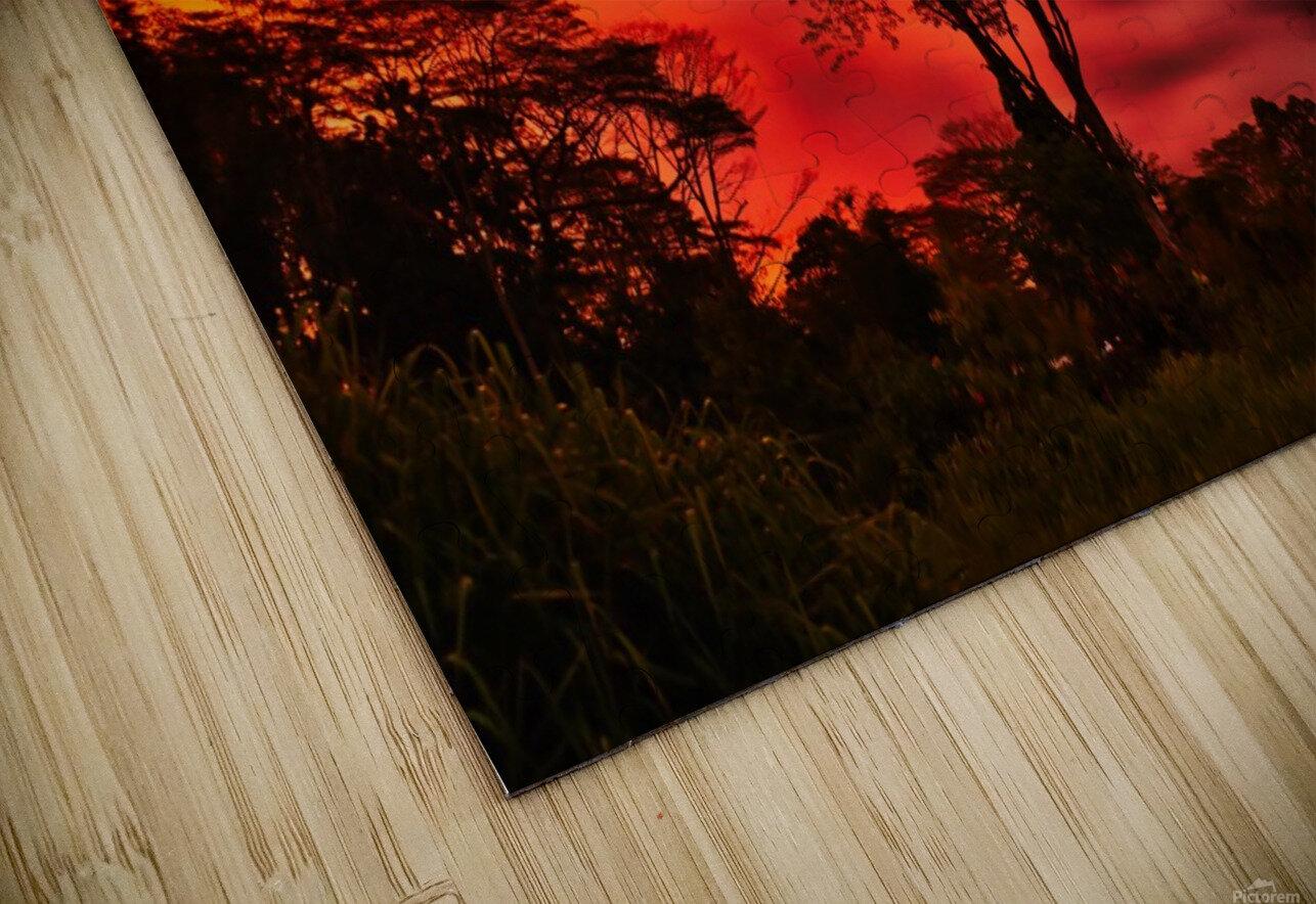 _IBC3569 HD Sublimation Metal print