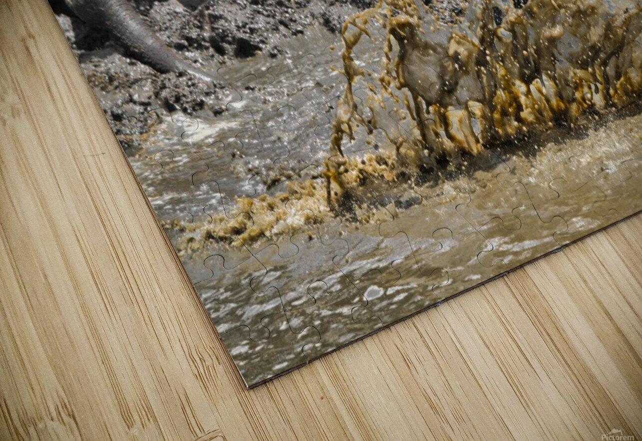 Swim break HD Sublimation Metal print