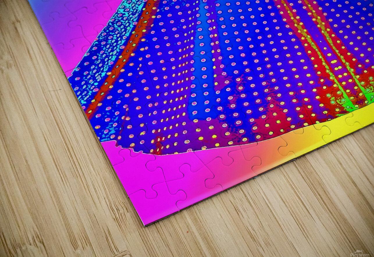 The Dress  -  by Neil Gairn Adams HD Sublimation Metal print