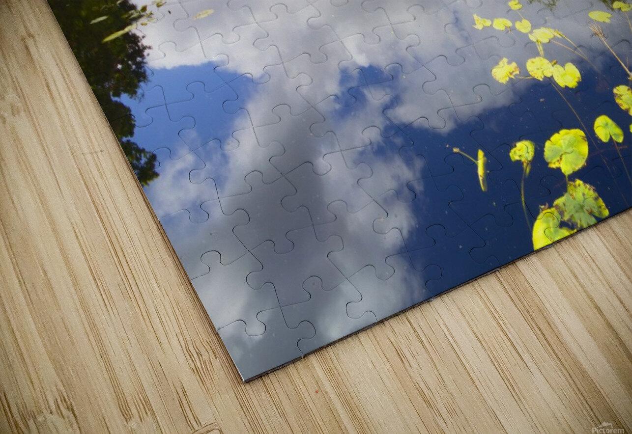 CW 029 Altamont Garden, Co.Carlow HD Sublimation Metal print