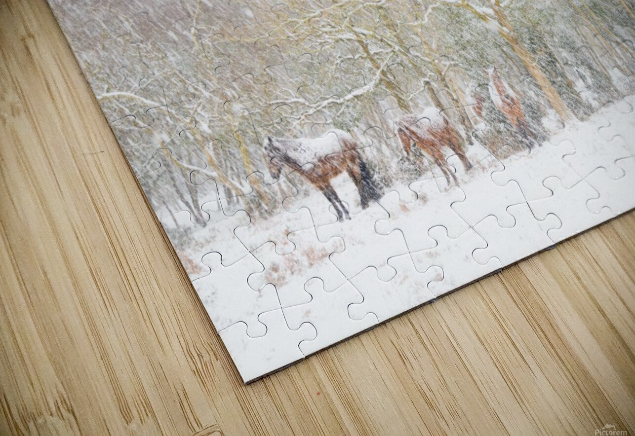 SNOW HORSES 3. HD Sublimation Metal print