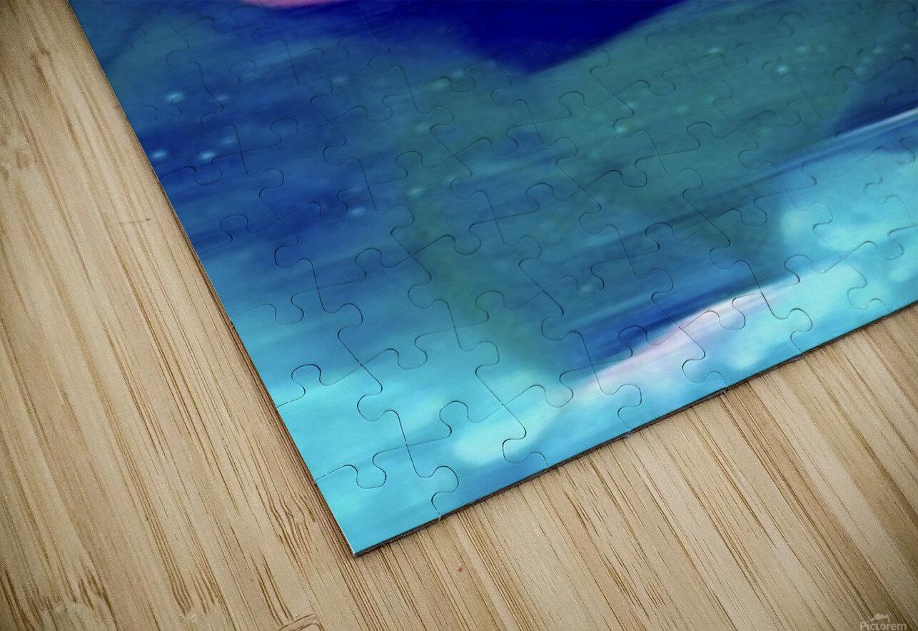 Flora of Paint HD Sublimation Metal print