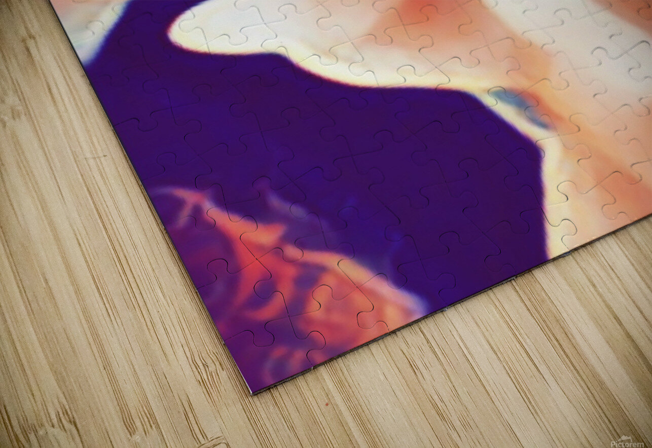 Desires in Peach HD Sublimation Metal print