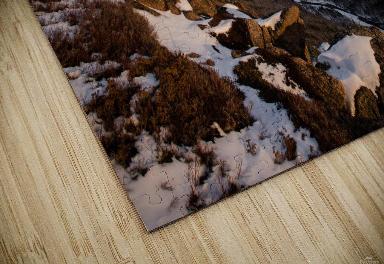 Franey Winter HD Sublimation Metal print