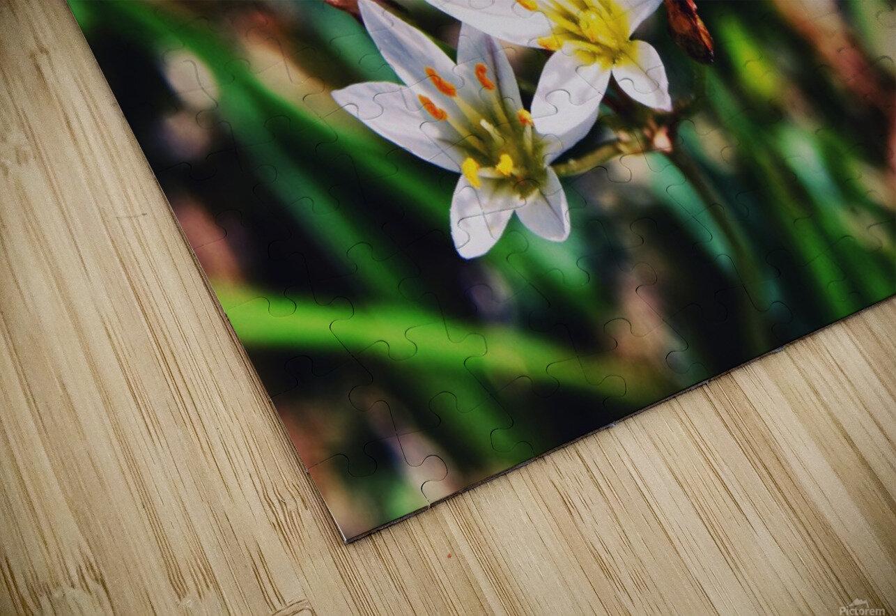 Flowers 2 HD Sublimation Metal print