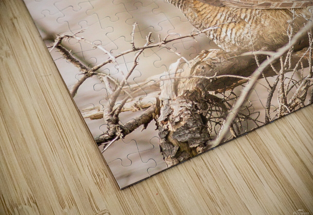 Great horned HD Sublimation Metal print