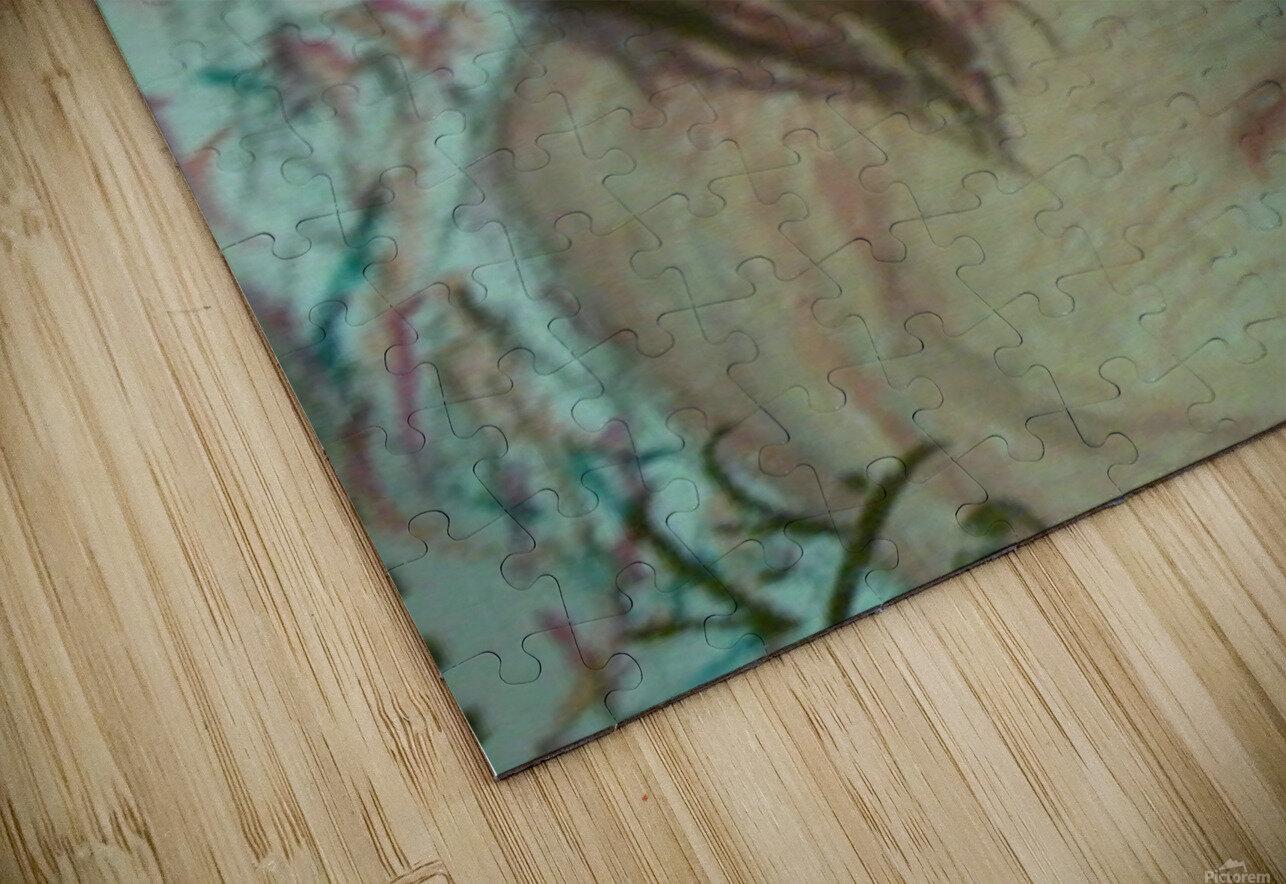 Woman  HD Sublimation Metal print