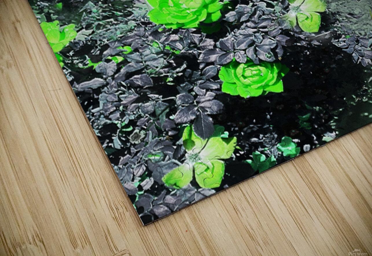 7E374240 FD69 4BD5 8609 CAC871FF3515 HD Sublimation Metal print