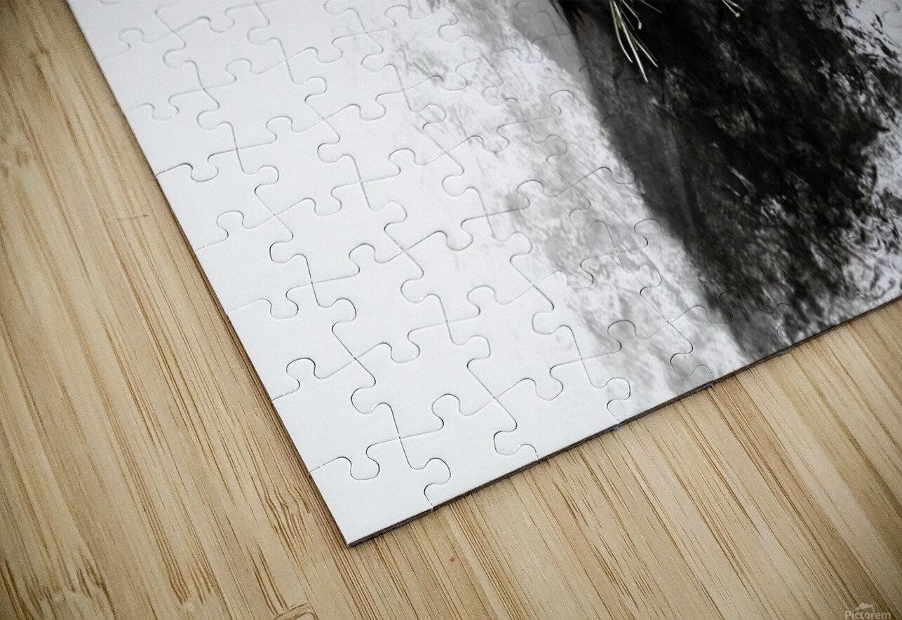 Highland Cow in Ink Impression de sublimation métal HD