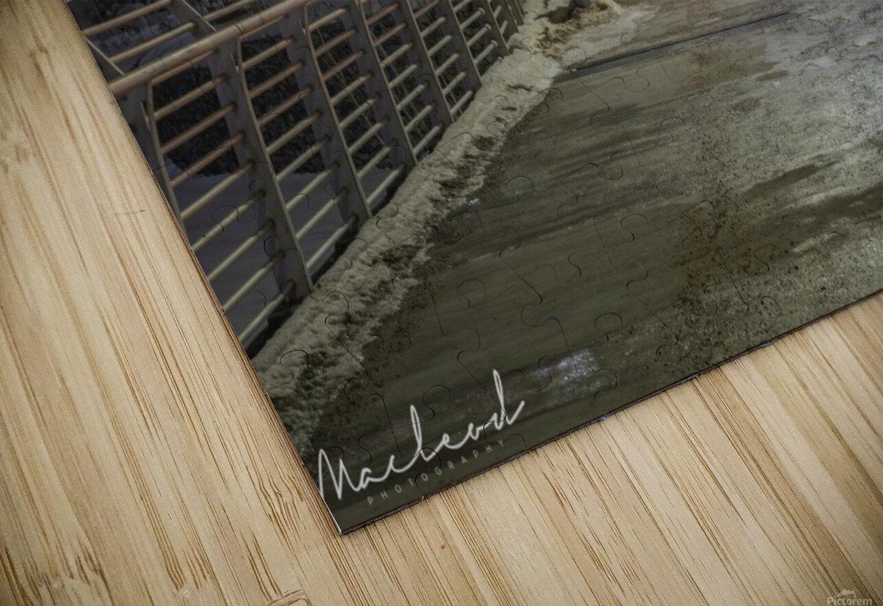 Walterdale_Bridge_NIK9912 HD Sublimation Metal print