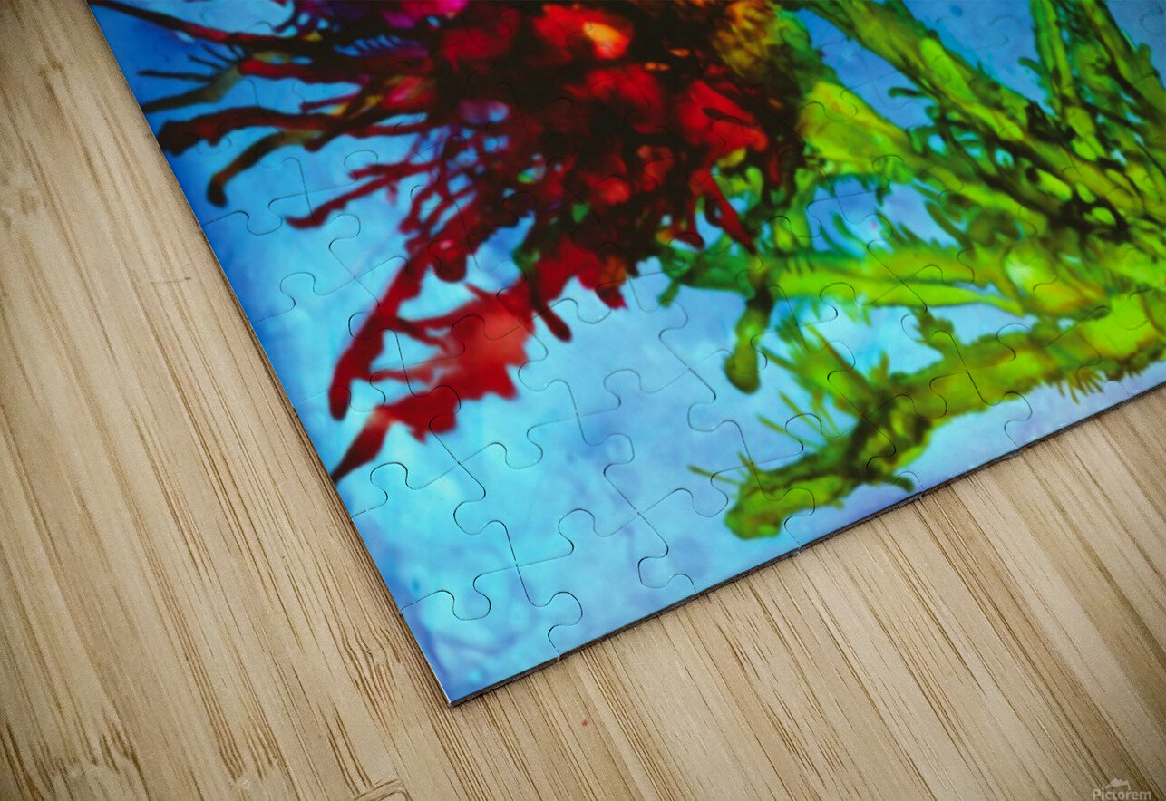Wicked Flower  HD Sublimation Metal print