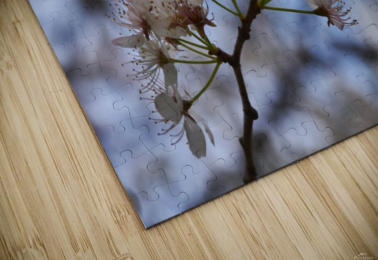 Spring Flowers HD Sublimation Metal print