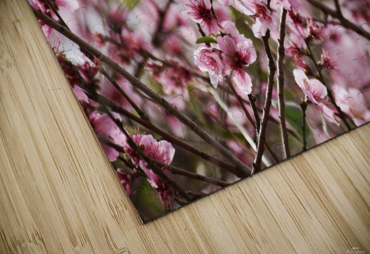 Pink Flowers HD Sublimation Metal print