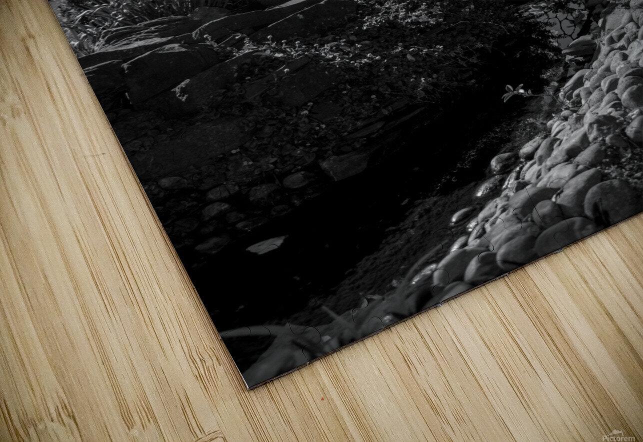 20190316 DSC_0136 2 HD Sublimation Metal print