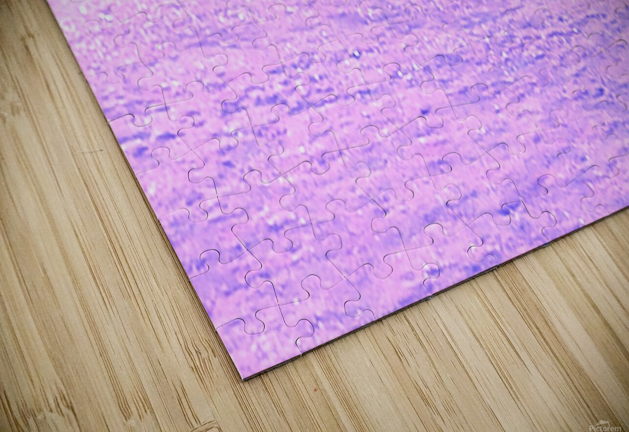 ICE 2 PINK HD Sublimation Metal print