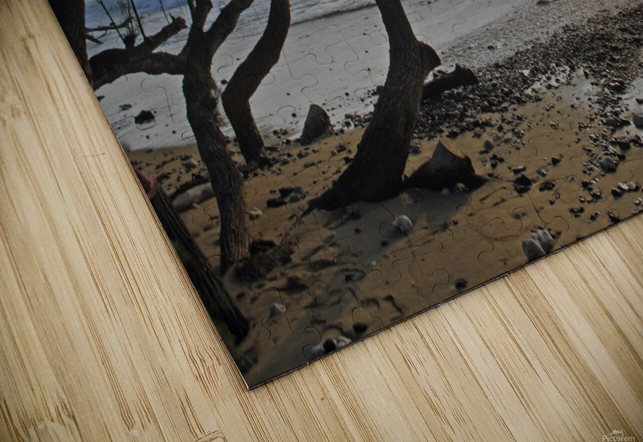 Wild Hawaii Beach HD Sublimation Metal print