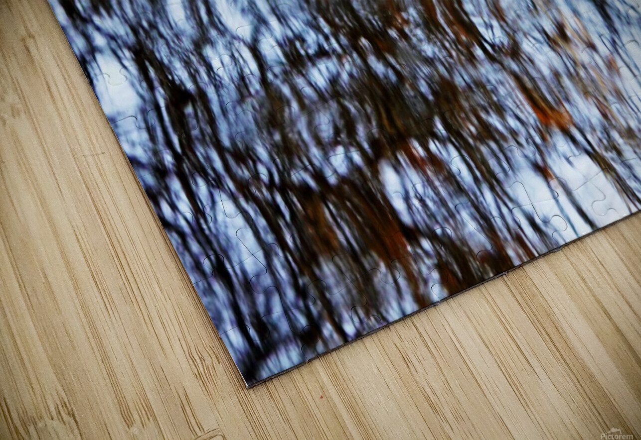 Searching For Spring HD Sublimation Metal print
