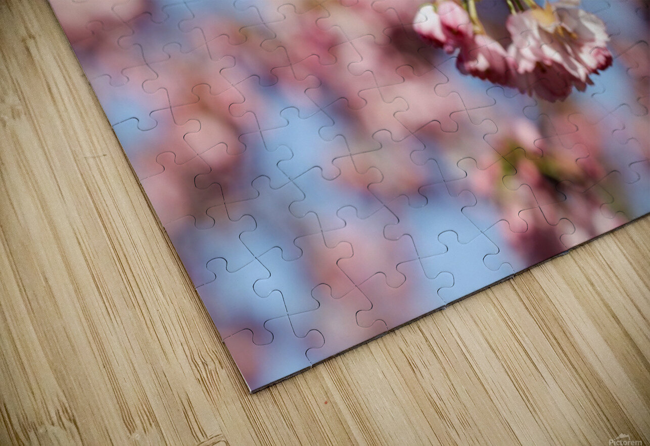 Cherry blossom Red HD Sublimation Metal print