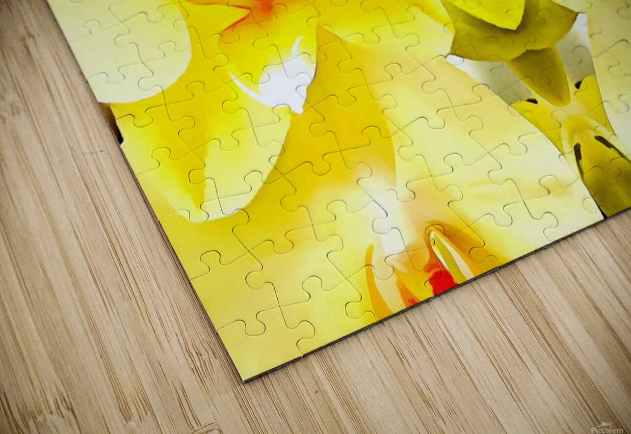 Yellow Orchid Pattern HD Sublimation Metal print