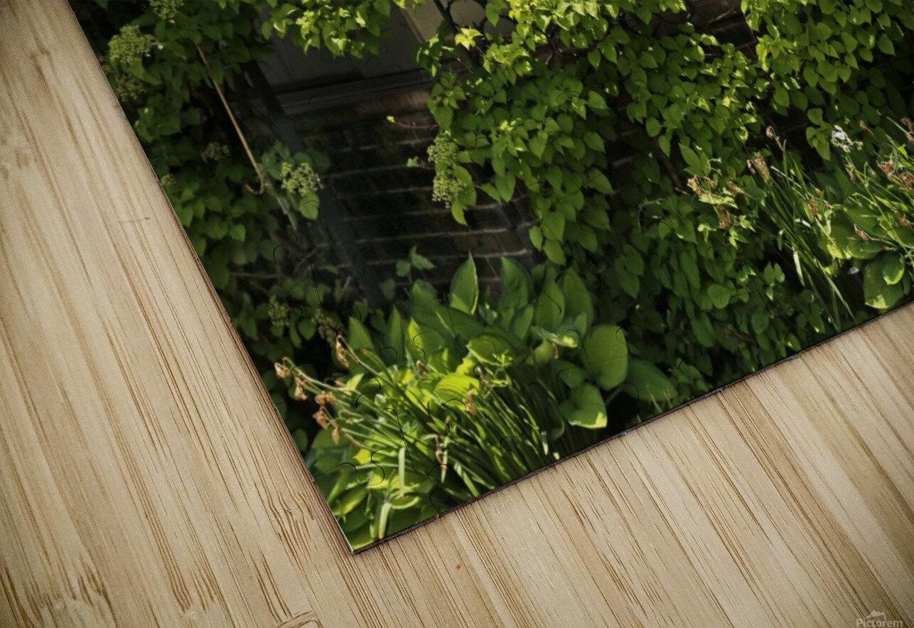Belle Isle Consevatory Trellis HD Sublimation Metal print