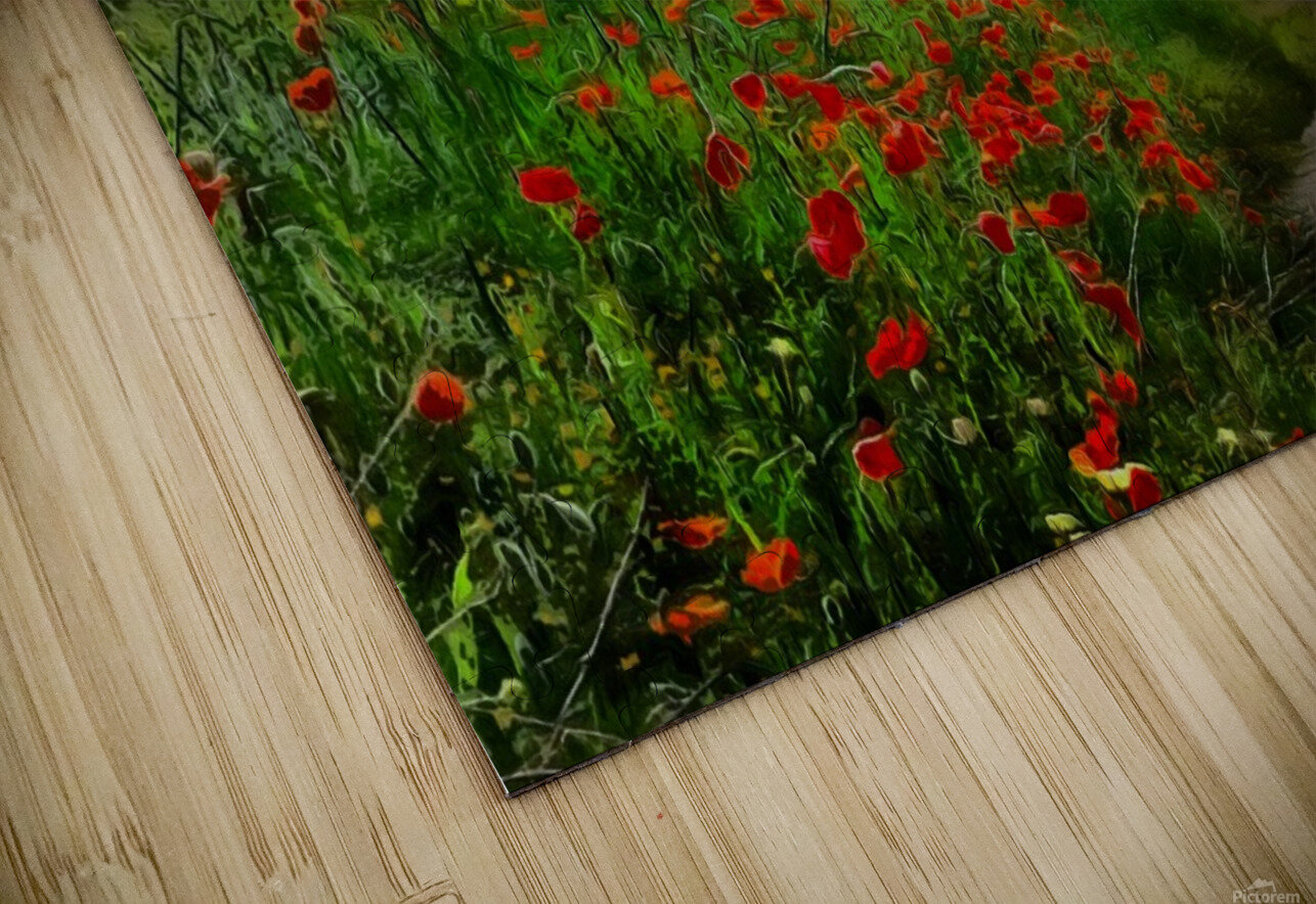 The Poppy Road to Happiness HD Sublimation Metal print
