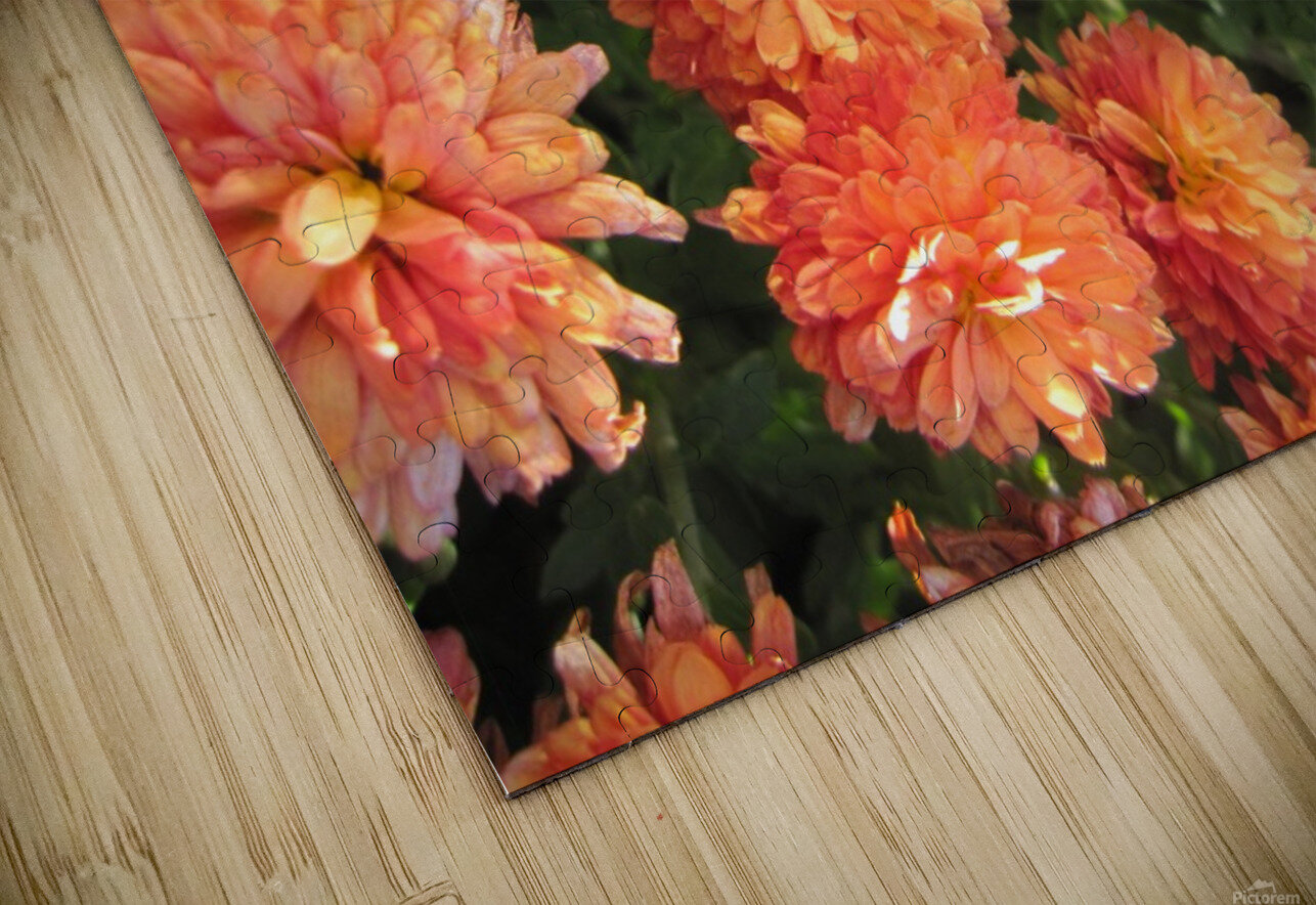 Flowers (53) HD Sublimation Metal print