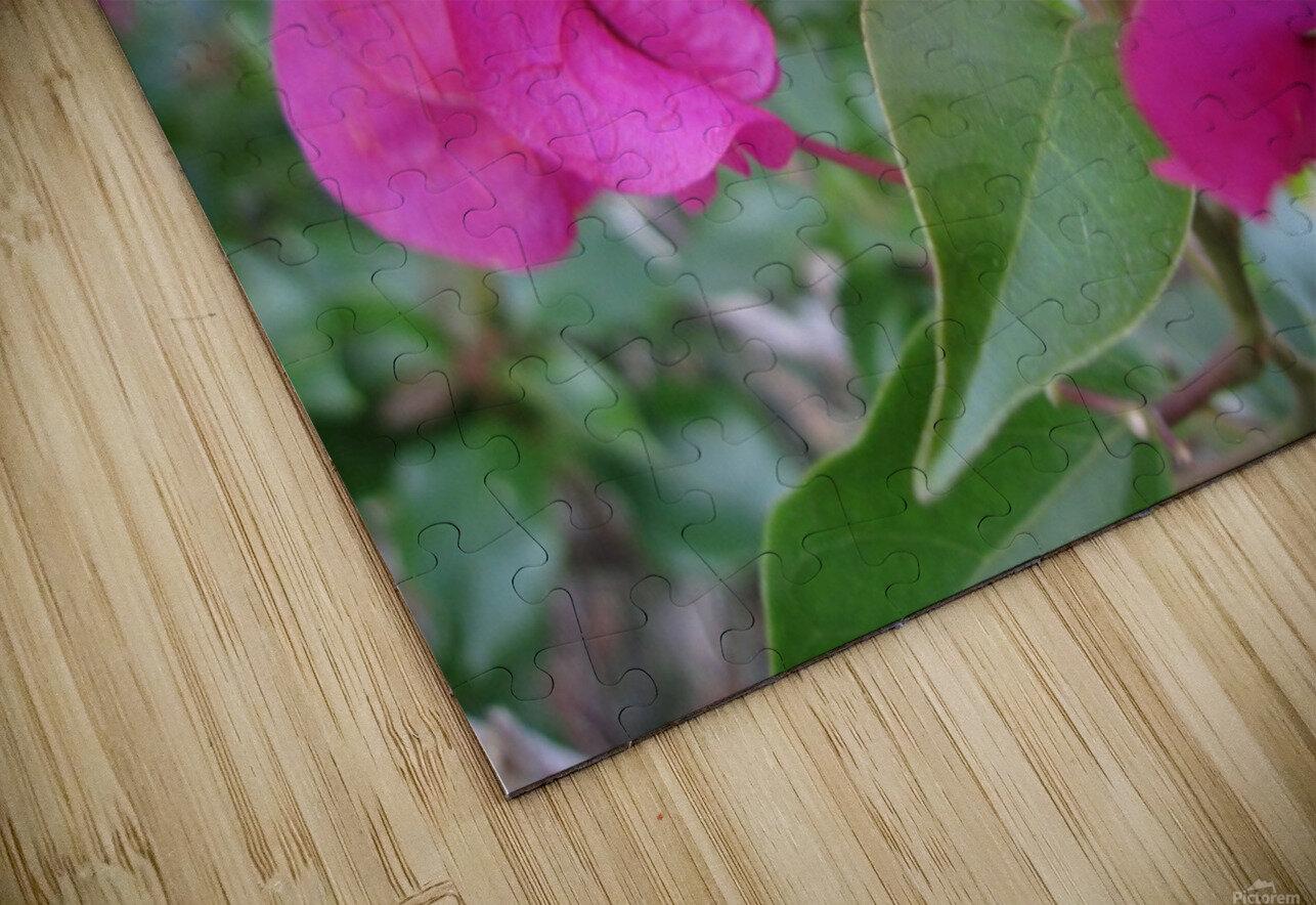 Flowers (47) HD Sublimation Metal print