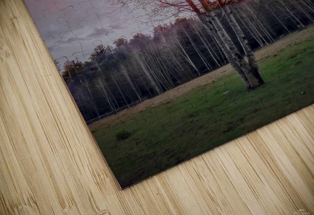ASPEN in May HD Sublimation Metal print