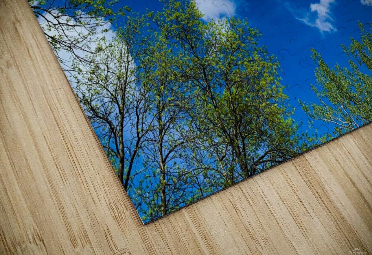 Bliss a Sky  Impression de sublimation métal HD