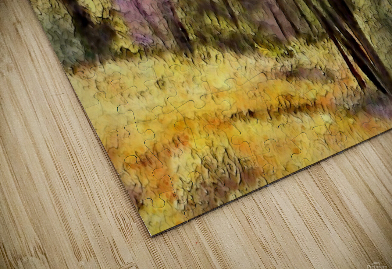 outdoor nature natural woods HD Sublimation Metal print