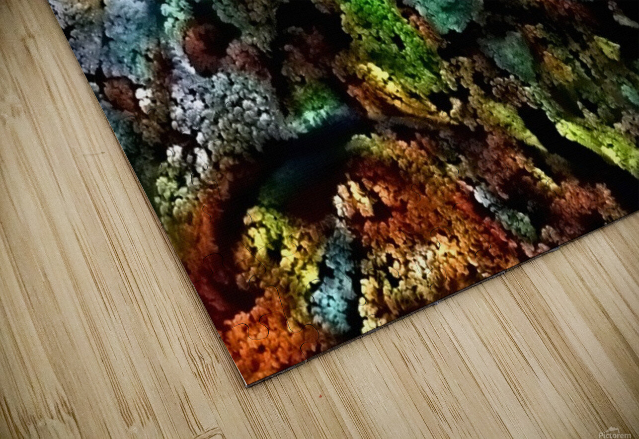 The Face of Nature HD Sublimation Metal print