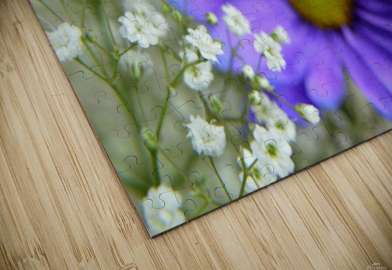 Babys Breath on Blue Daisy HD Sublimation Metal print