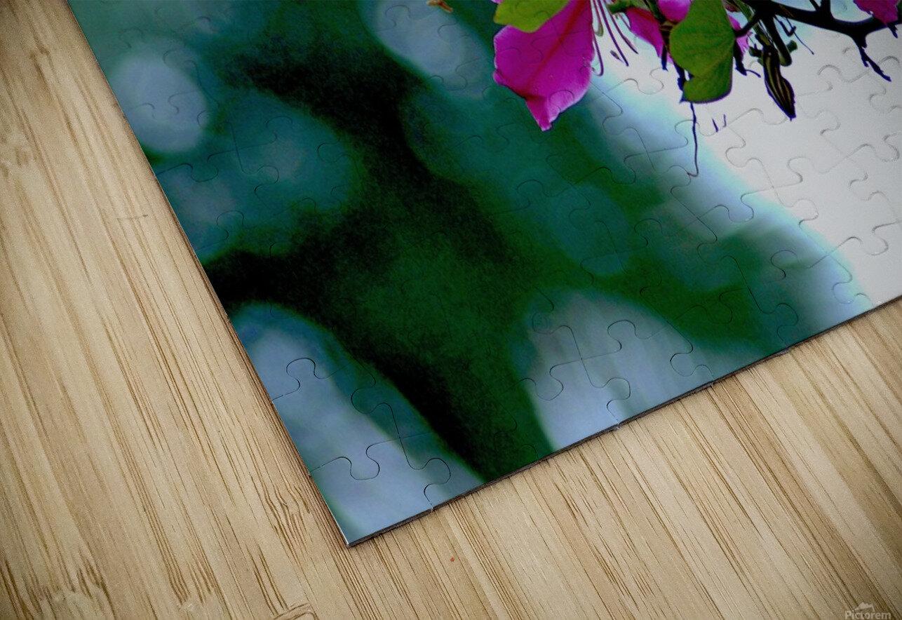F07 - Bauhinia Variegata HD Sublimation Metal print