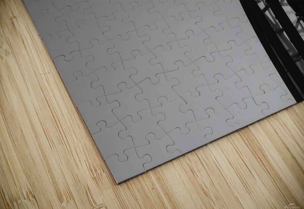IMG_7617 HD Sublimation Metal print