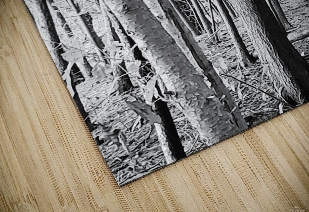 Trees HD Sublimation Metal print