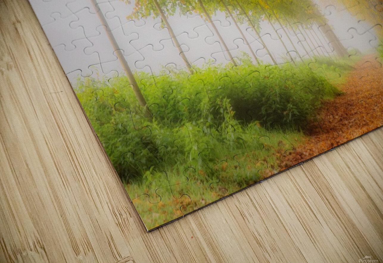 Autumn Colors HD Sublimation Metal print