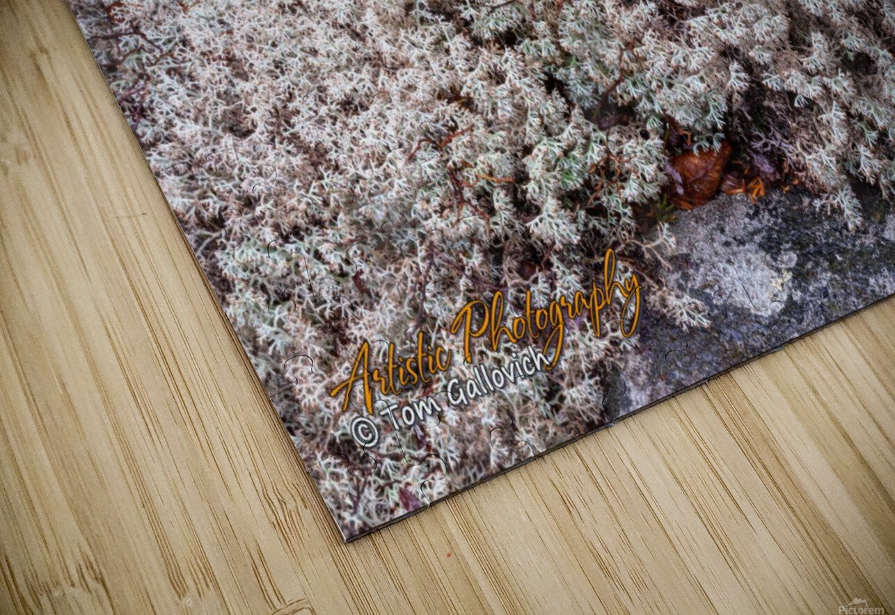 Nature HD Sublimation Metal print