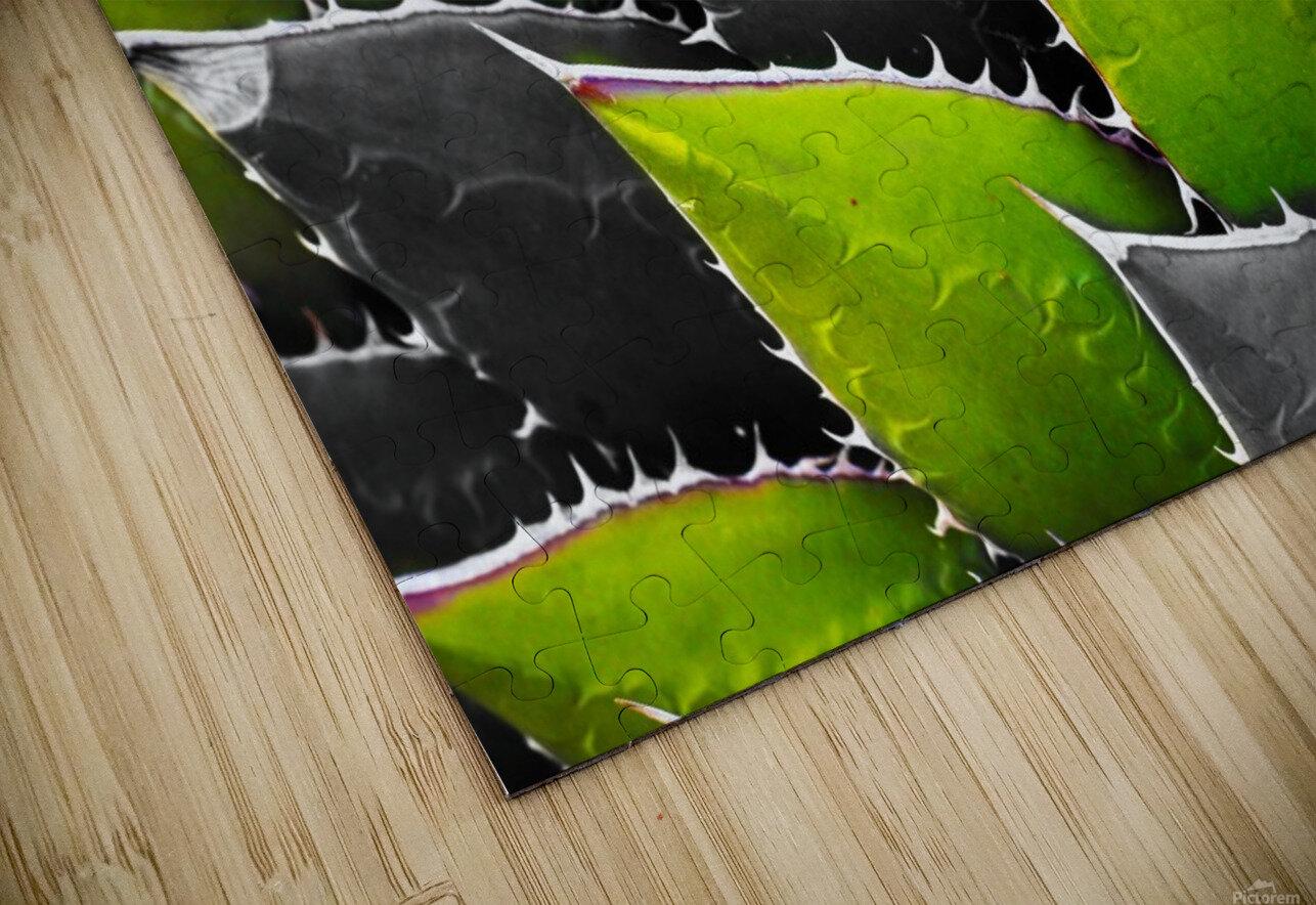 Thorny HD Sublimation Metal print